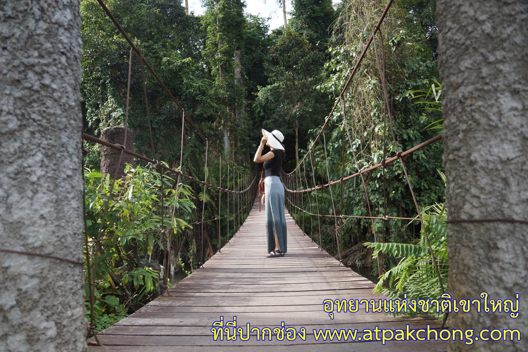 สะพานข้ามลำตะคอง ด้านหลังศูนย์บริการนักท่องเที่ยว อุทยานแห่งชาติเขาใหญ่